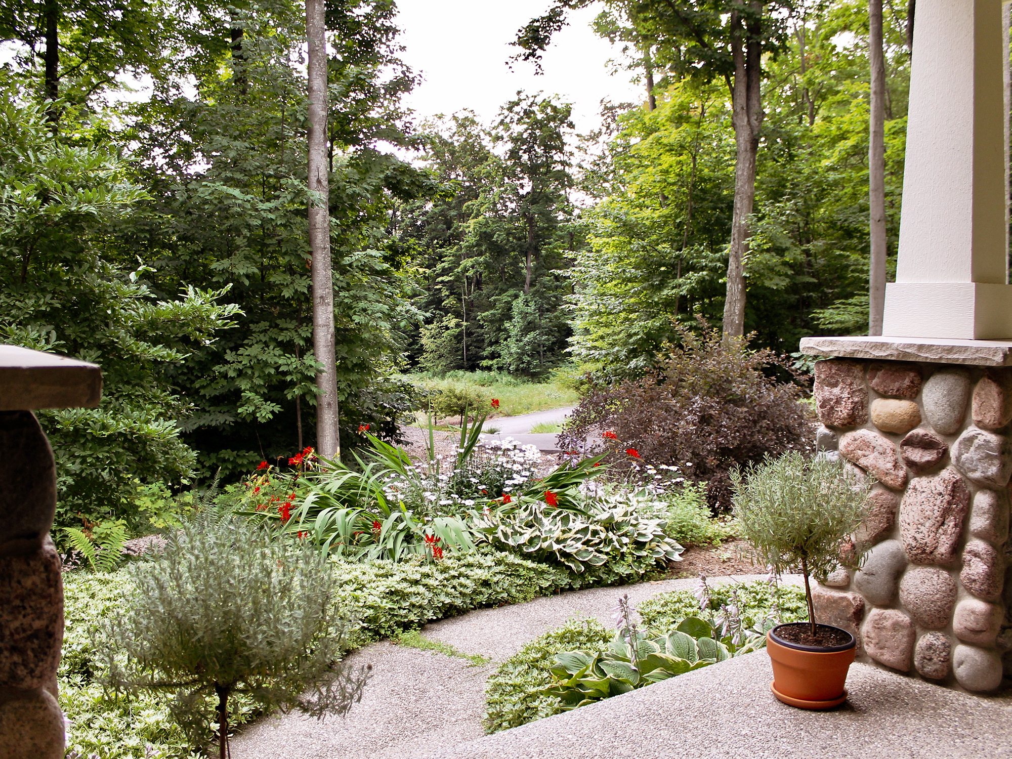 view from new construction home in Glen Arbor Northern Michigan residential on wooded lot